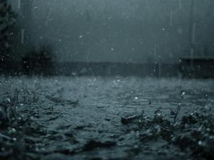 rain-wallpaper-5
